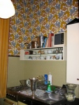 Wall over stove-fridge-sink unit. Lincrusta and wallpaper